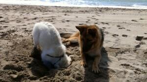 Tina y Tula en la playa