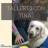 Talleres con Tina